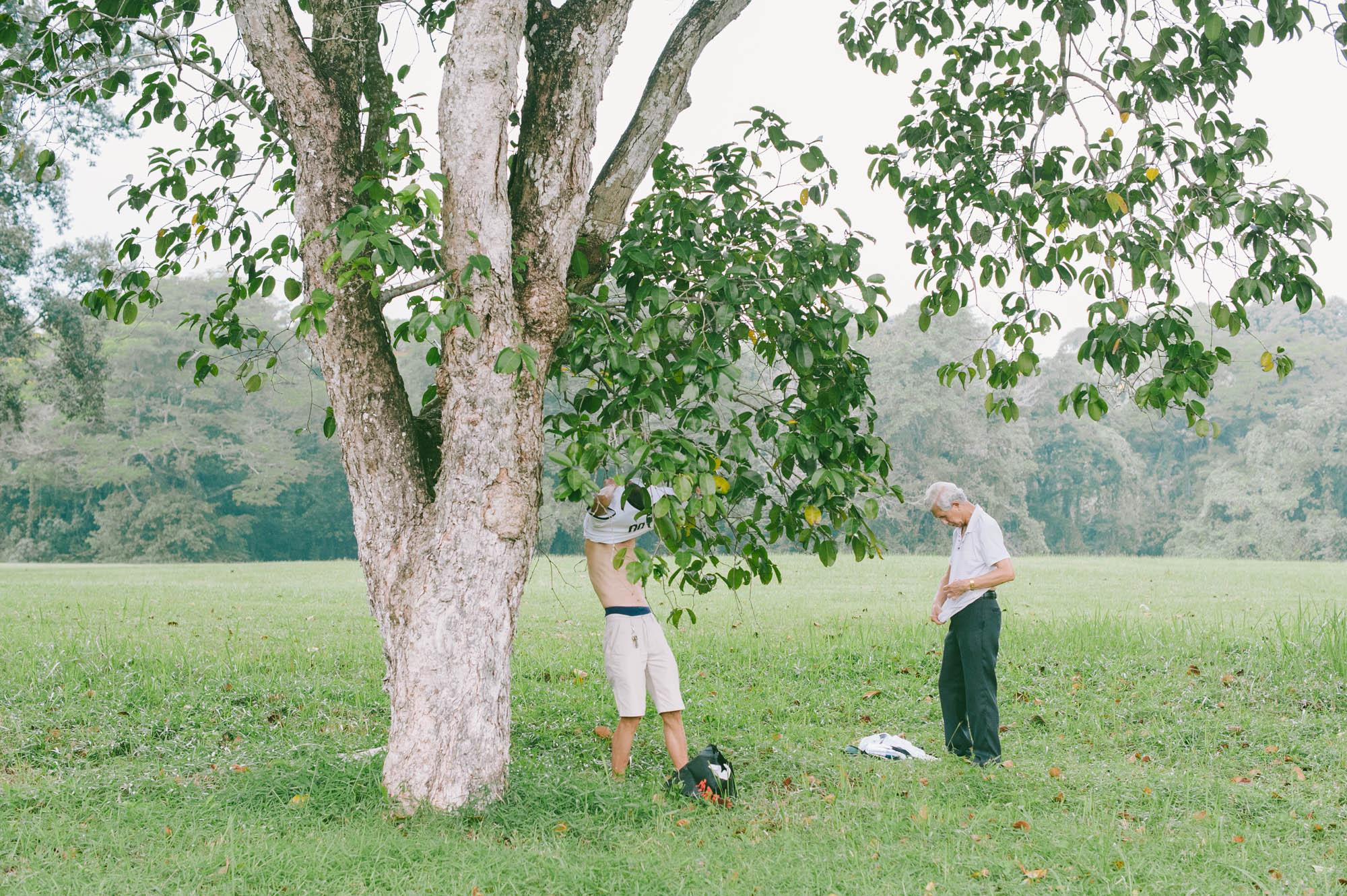 a film by  http://www.grain.sg