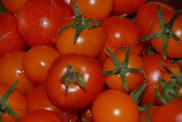Harvest2-004.jpg