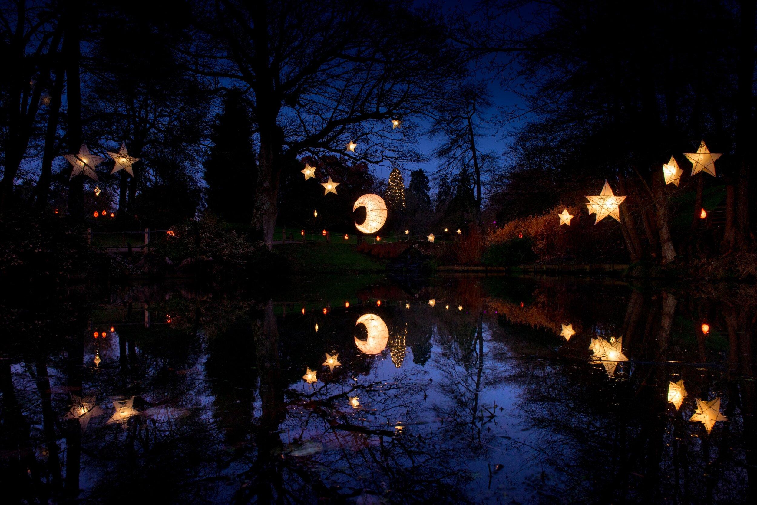 Glow Wild_moon and stars_JH.jpg