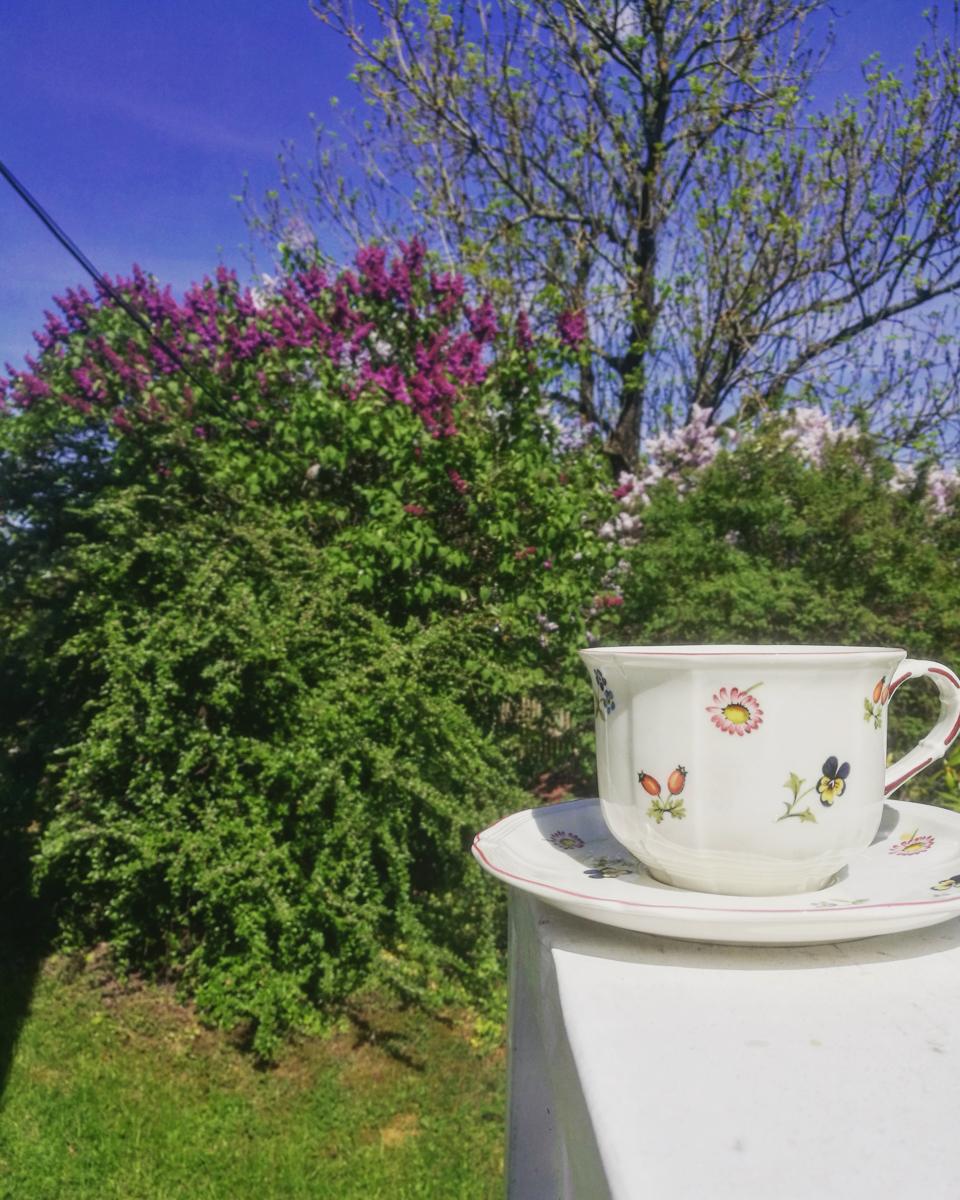 En tur på Nesodden, sørget for å drikke masse te av petit fleur og lukte masse på syrinene.