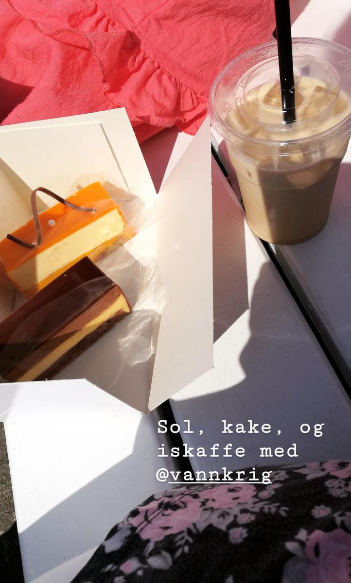 I Hamar har jeg fått en venn som elsker Oslo, men også har havnet her. Sammen prøver vi å finne et Hamar vi kan elske, et kakestykke hver, med utsikt over Mjøsa hører definitivt med på lista.