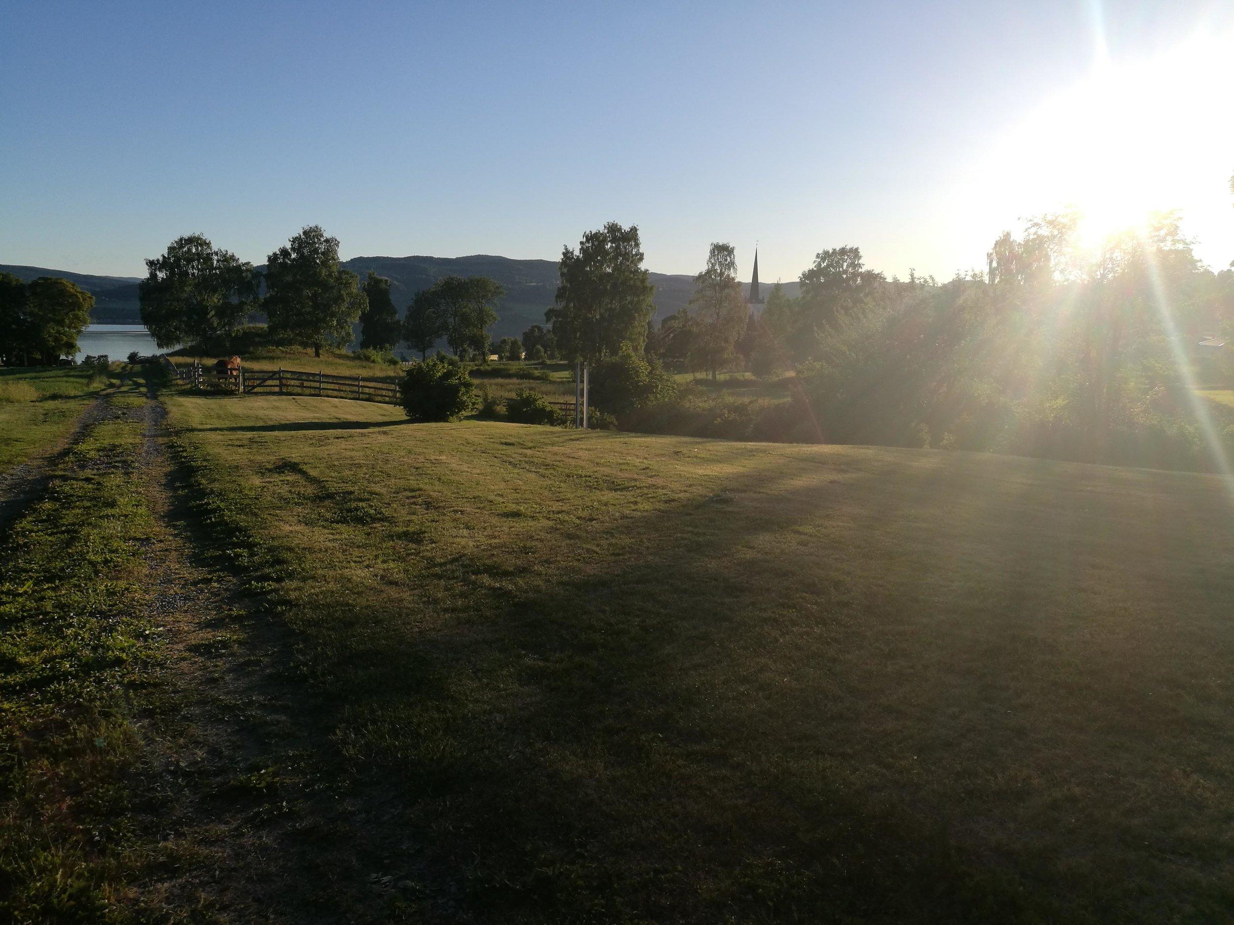 På juni sin siste dag var jeg på en middag på Sveinhaug gård, middag var en åpning av Mjøsgårdene sommeren 2018. En fantastisk opplevelse, langbord dekket til 100 personer ute på en gård, kun lokaldyrket mat. Jeg var fotograf og skal selvfølgelig vise dere bilder fra dette etterhvert også!