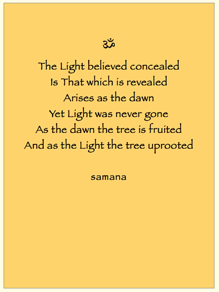 the tree uprooted©samana.png