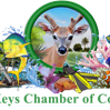 LKCC_Logo.png