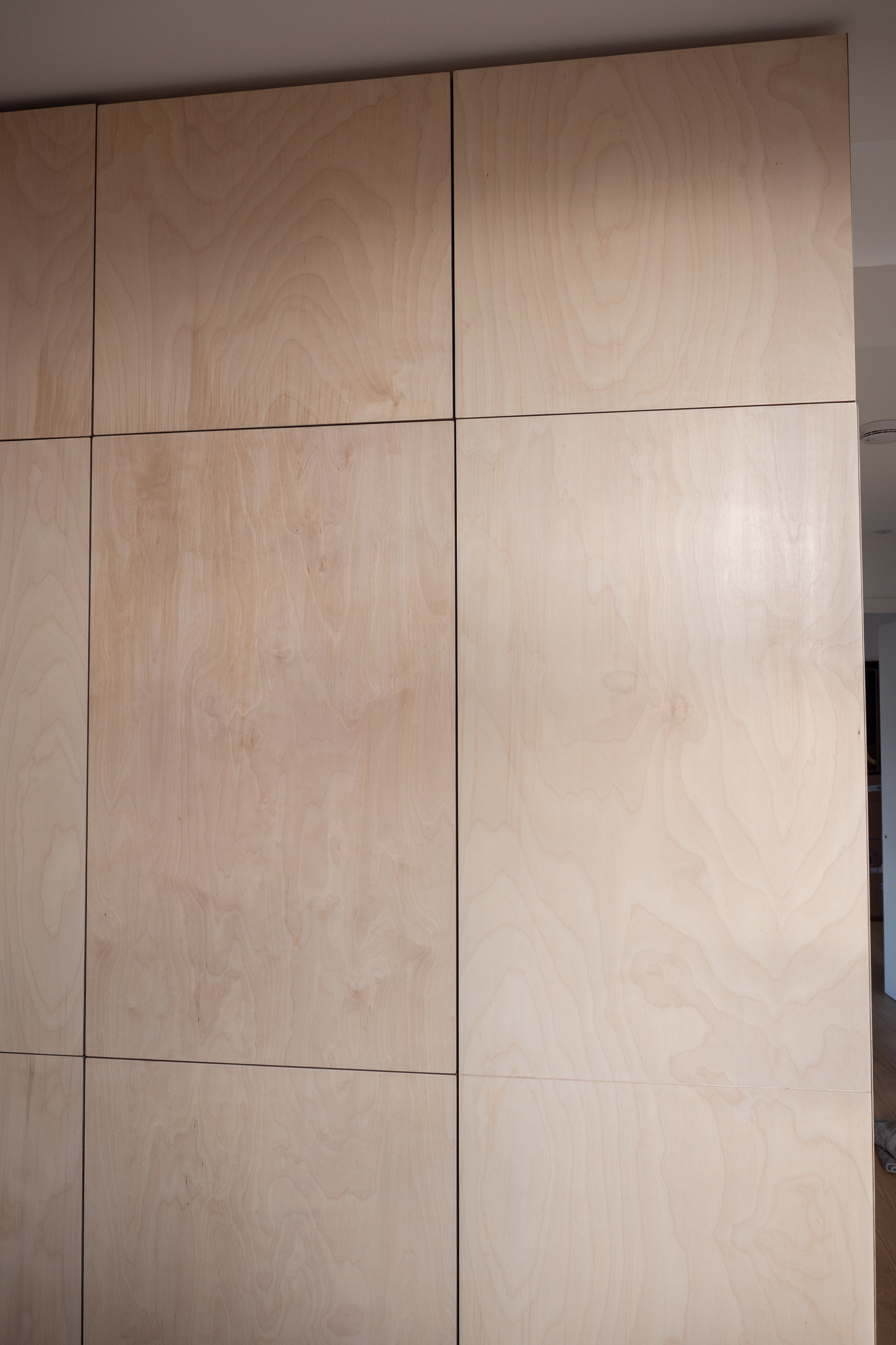 Birch ply doors showing their beautiful finish