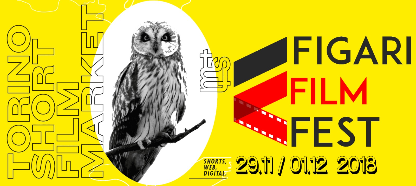 news-torino-film-festival.jpeg