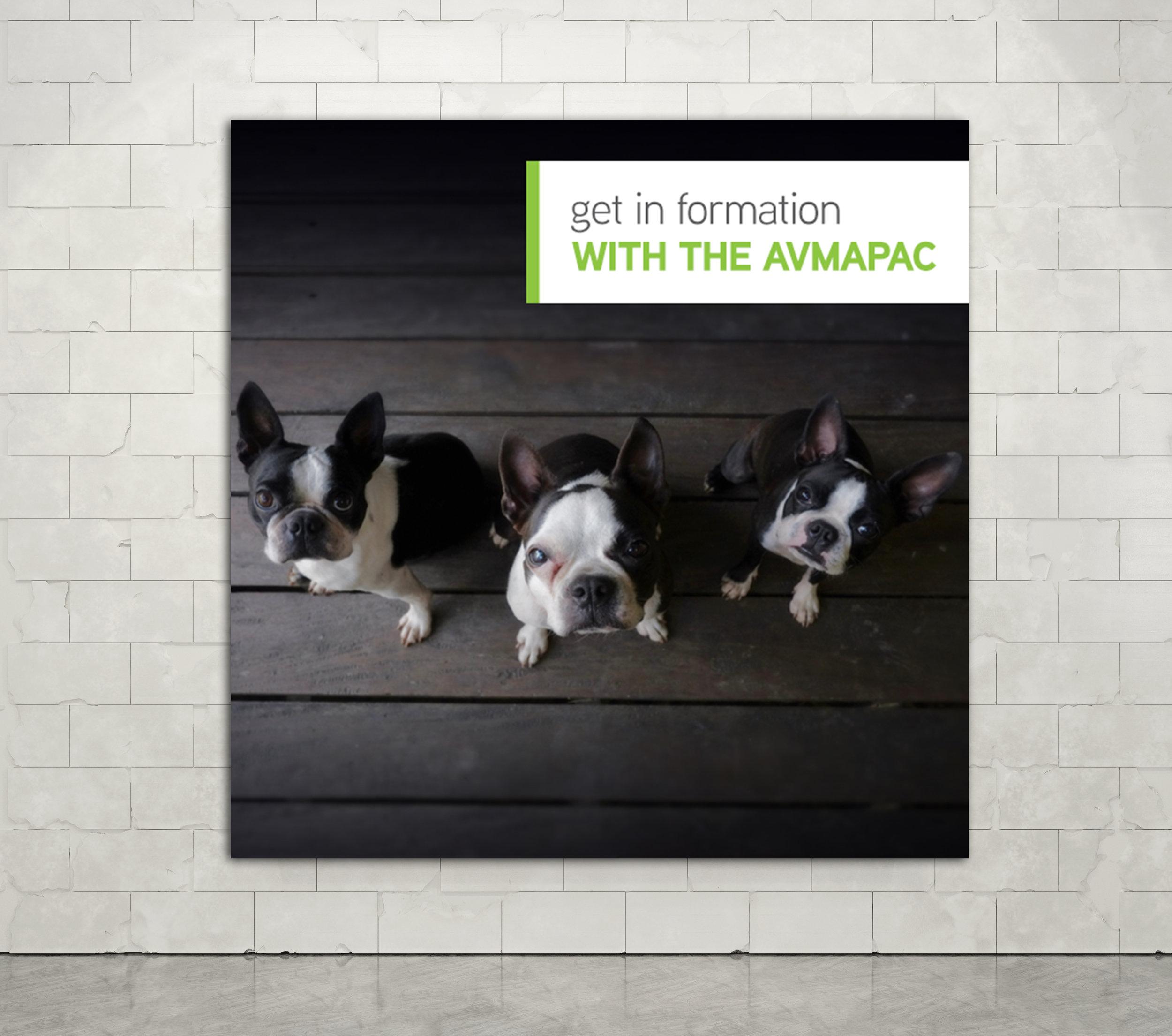 AVMA-Formation-Poster-Mockup.jpg