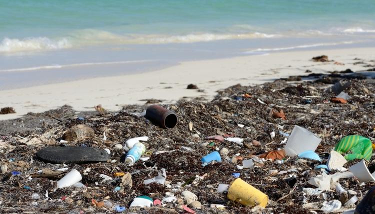 Marine Debris... the all too common site. Image via  Positive Change for Marine Life