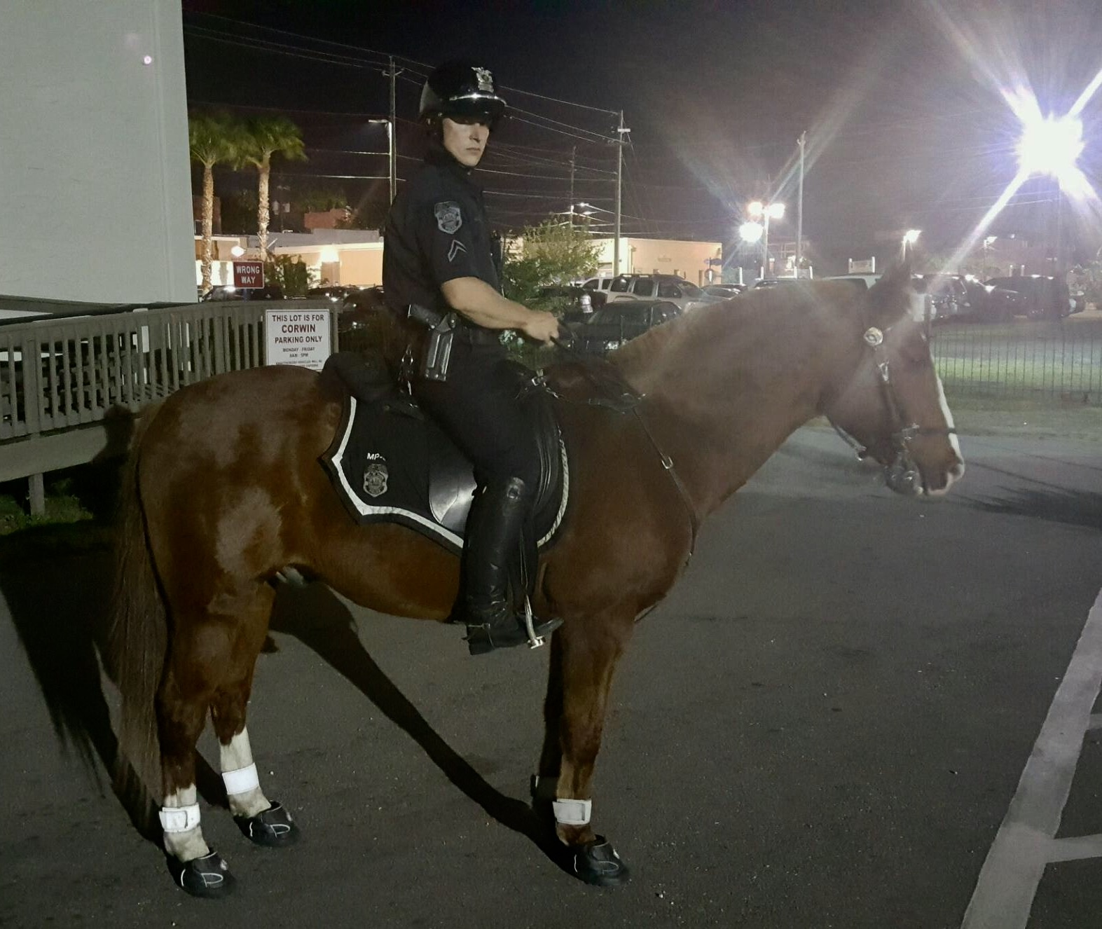 tampa mounted police duncan in his new all terrain jogging shoes