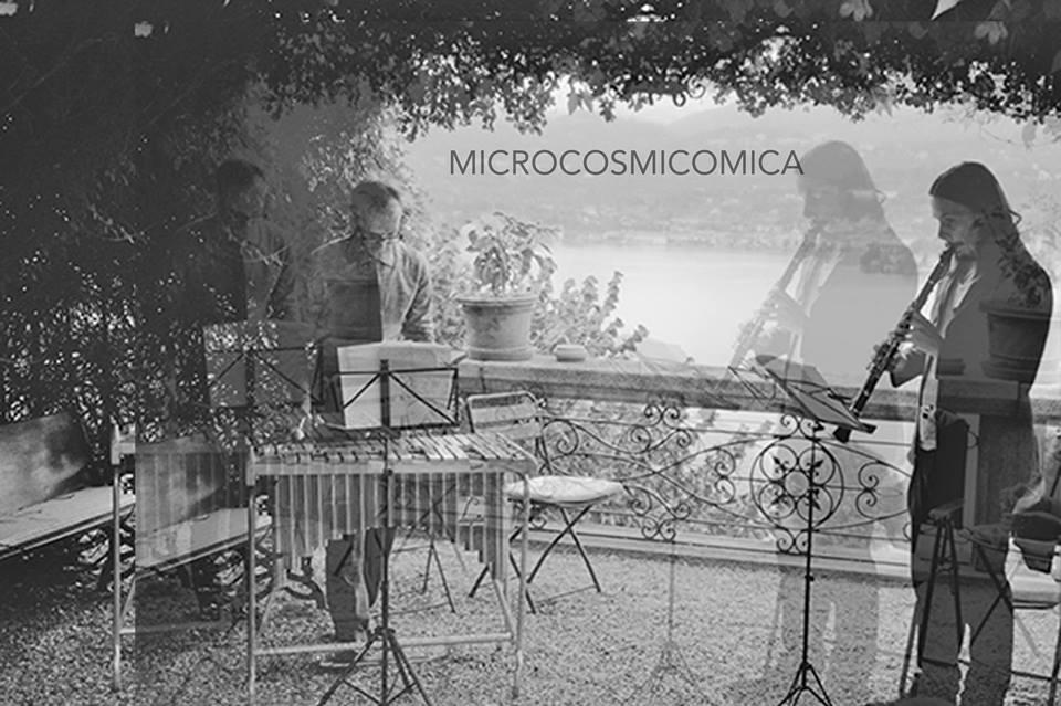 microcosmicomica.jpg