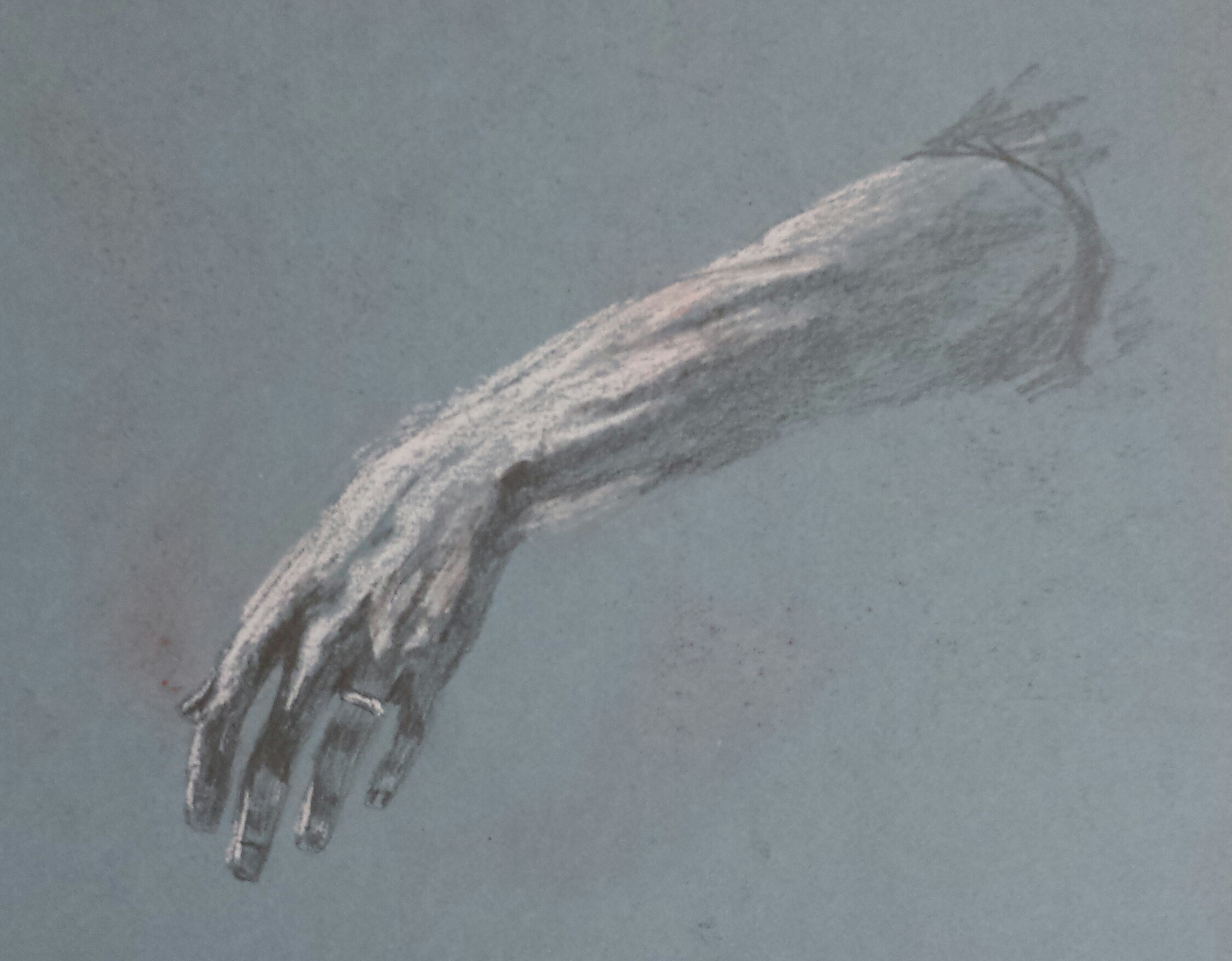 Study of an Arm, 2016, pastel.