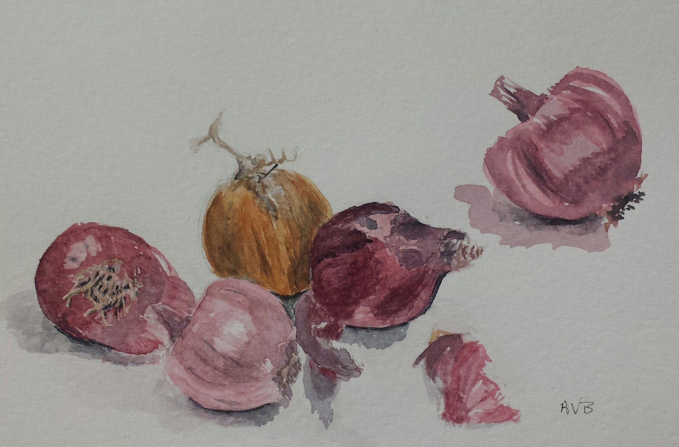 Red Onions, 2015, watercolor.