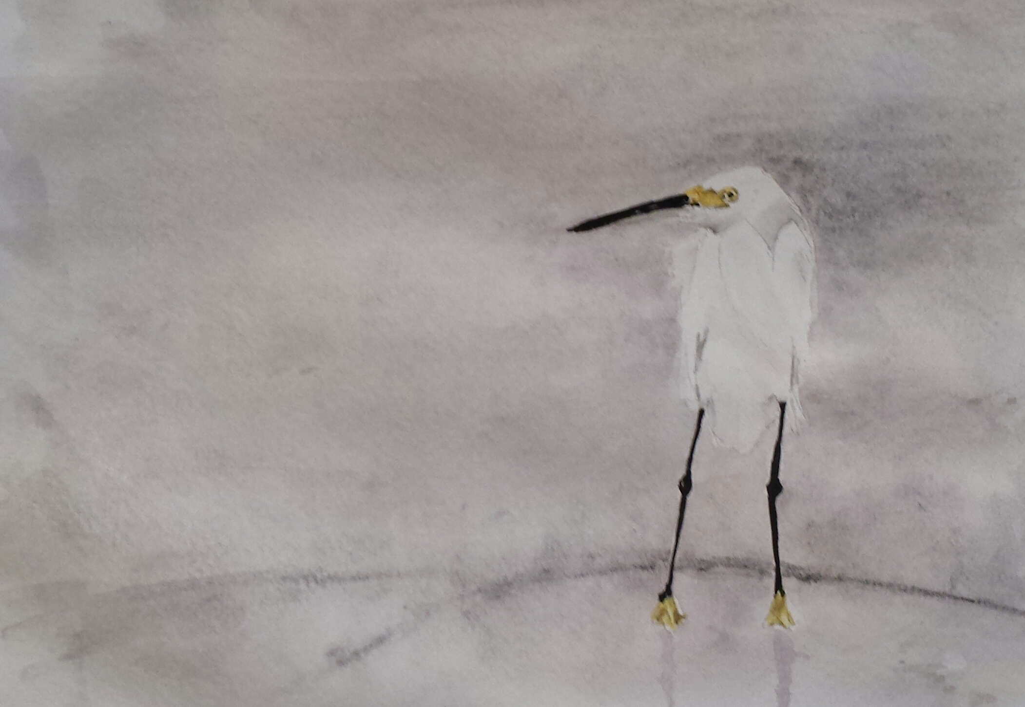 Snowy Egret, North Carolina, 2016, pen and watercolor.