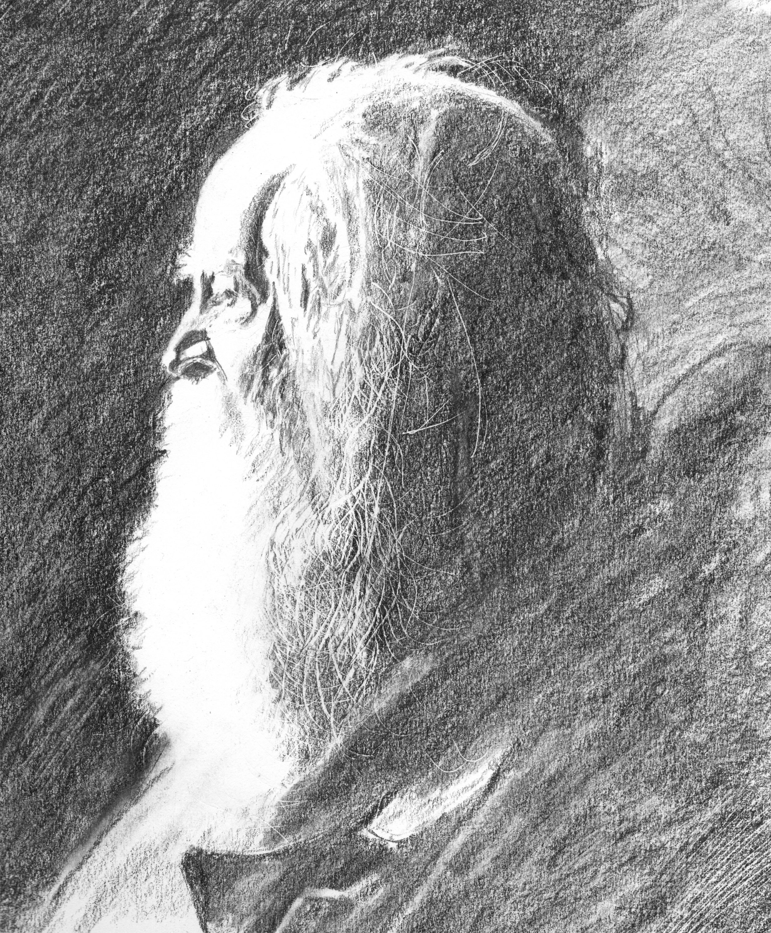 Walt Whitman, graphite on paper, 2016