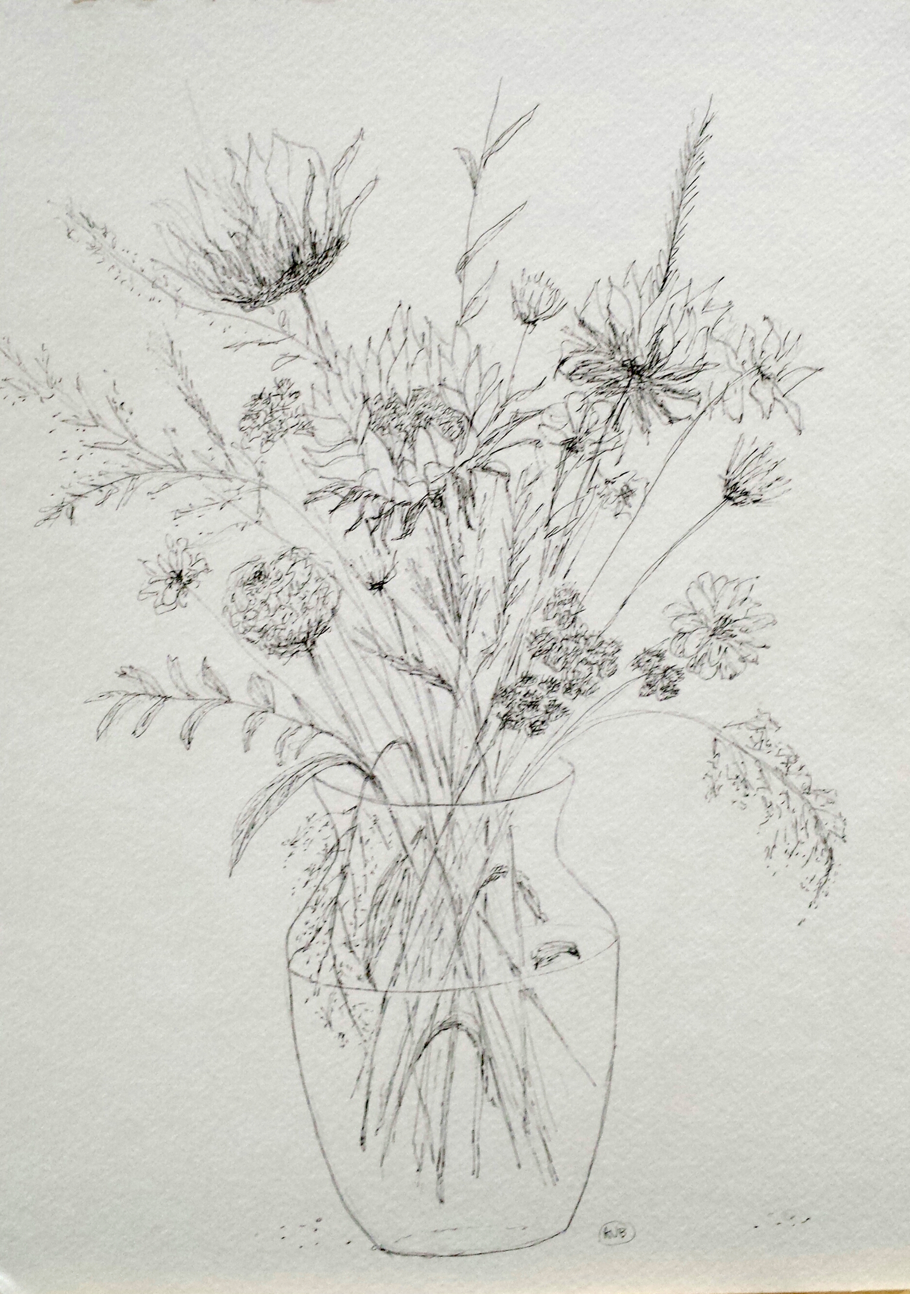 Sunflowers, graphite, 2016