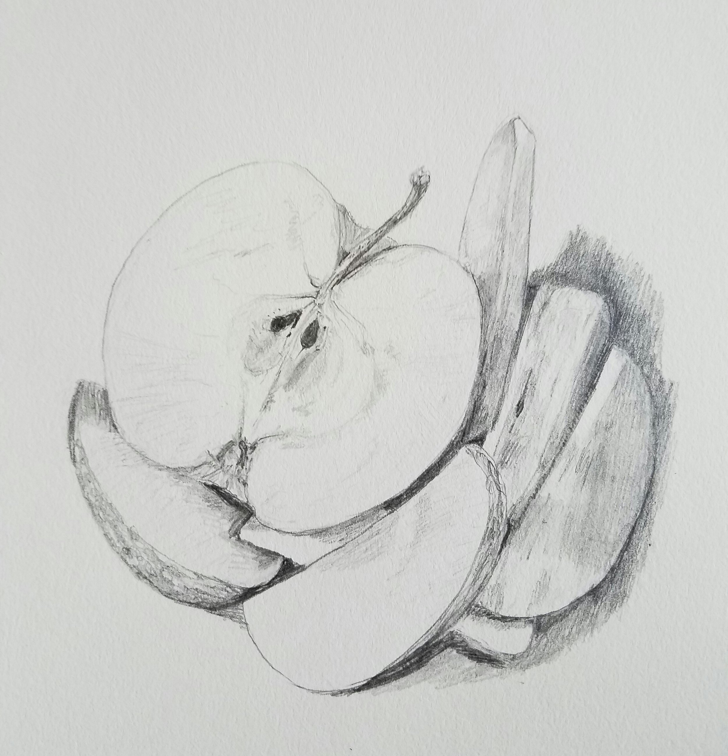 Apple, graphite, 2017