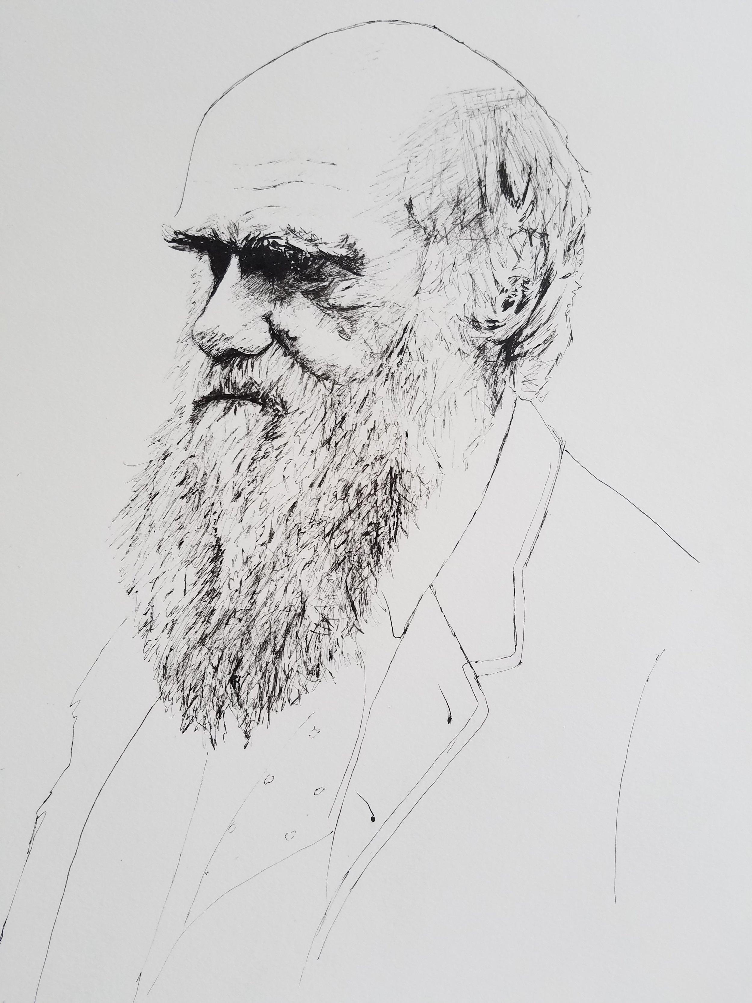 Charles Darwin, pen and ink, 2017