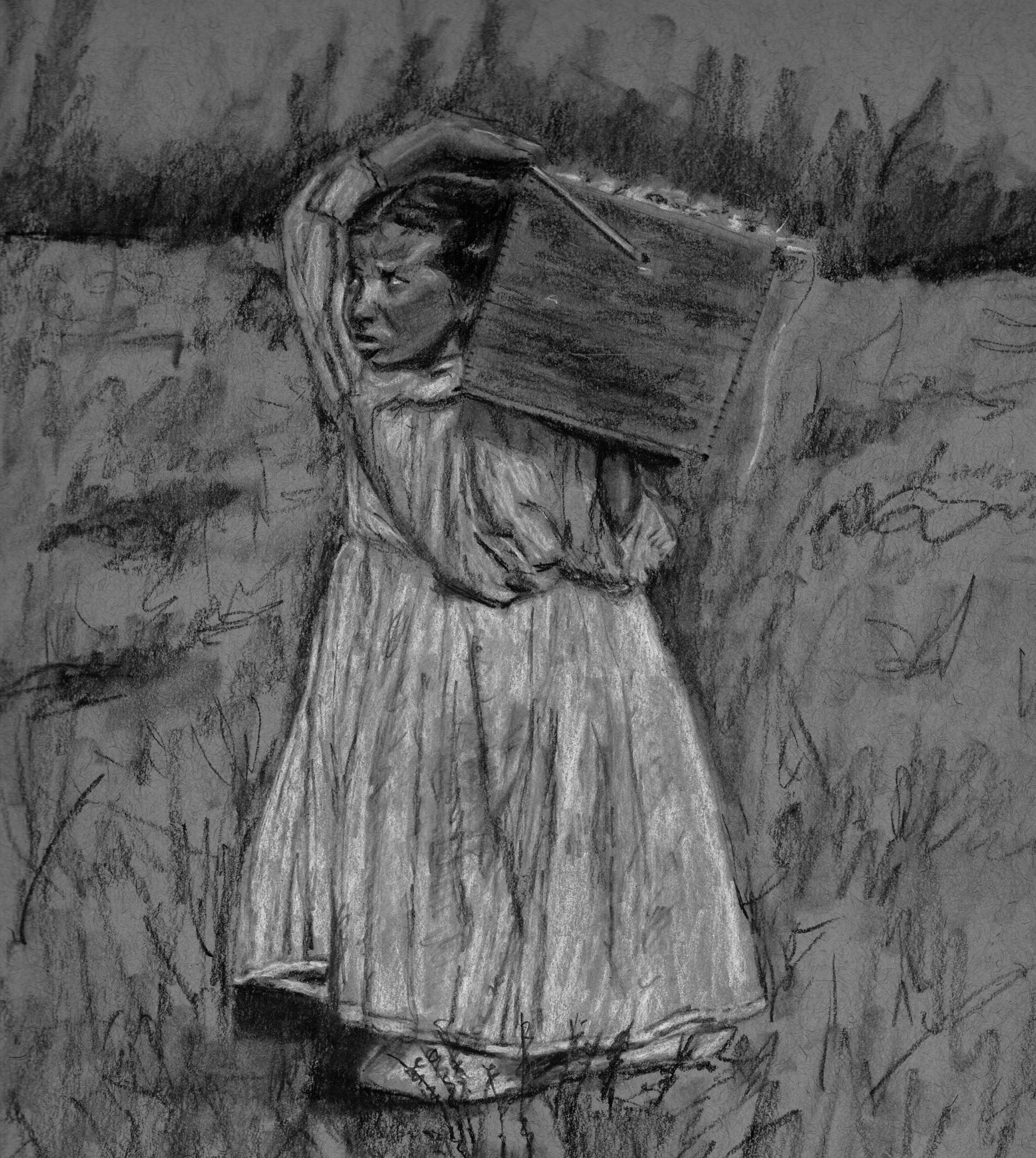 8 year old cranberry picker, 1910; charcoal on toned paper; 2017