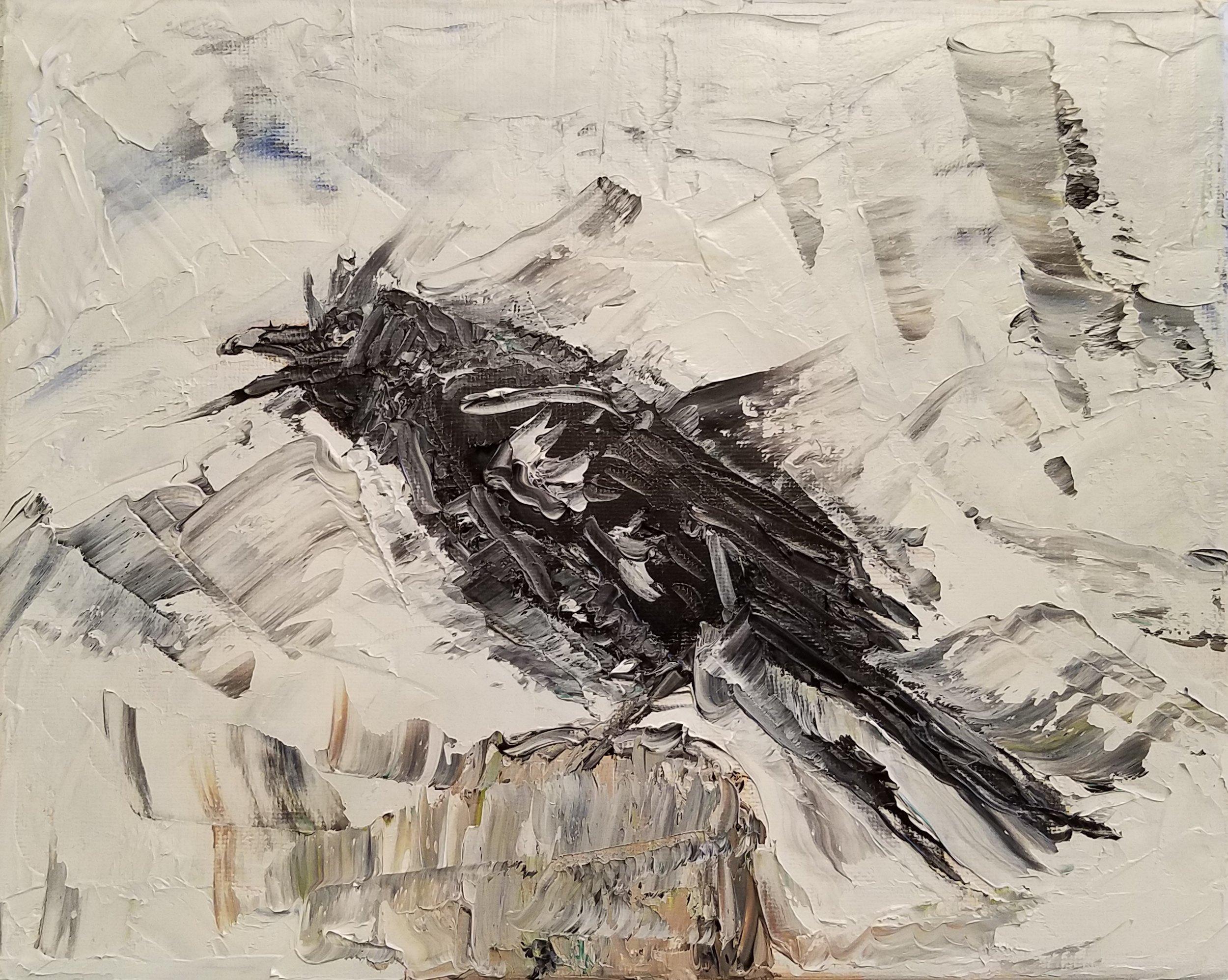Angry crow; oil; 2017