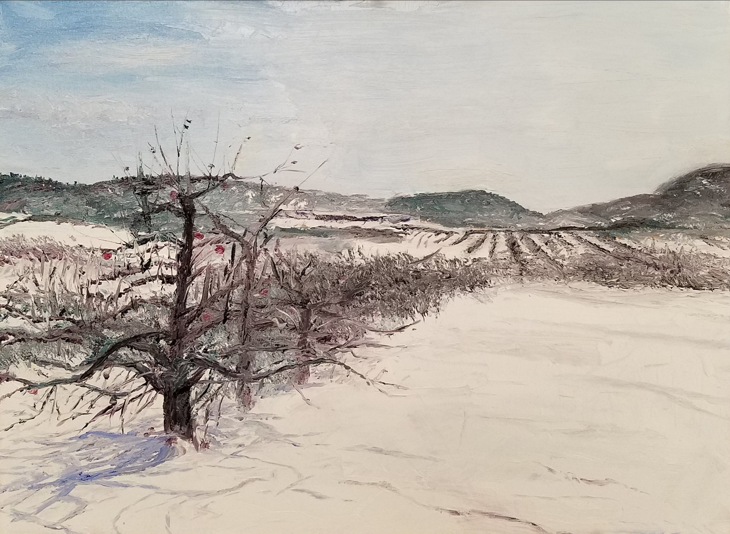 Apple orchard in the snow; oil; 2018
