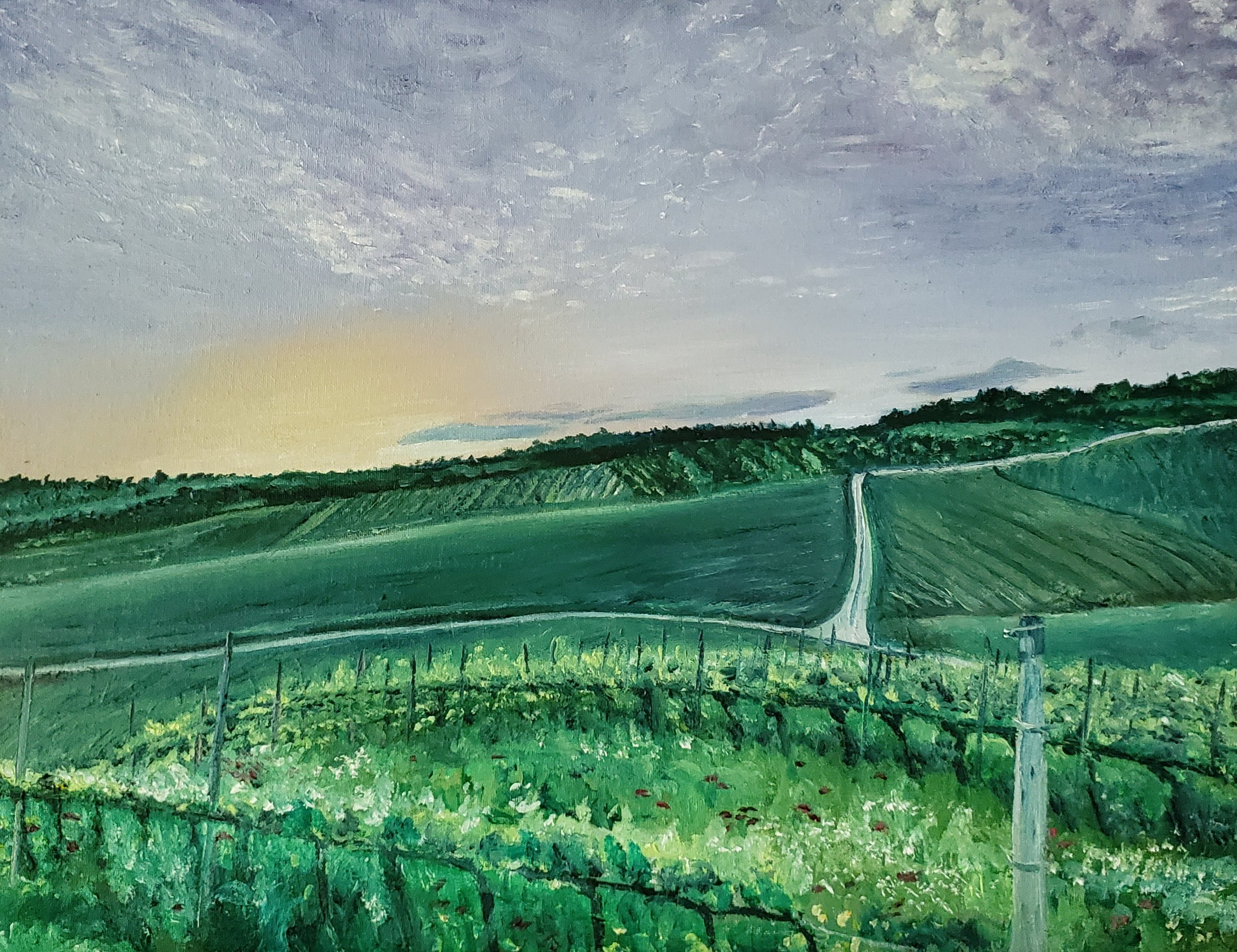 Vineyards, Forlì, Emiglia-Romagna, Italy; oil on panel; 2019