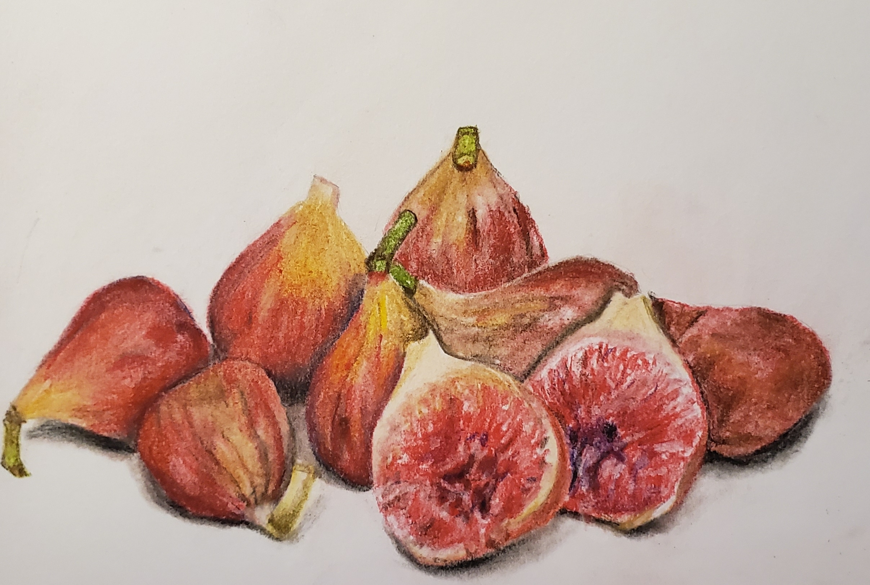 Figs; pastel; 2019