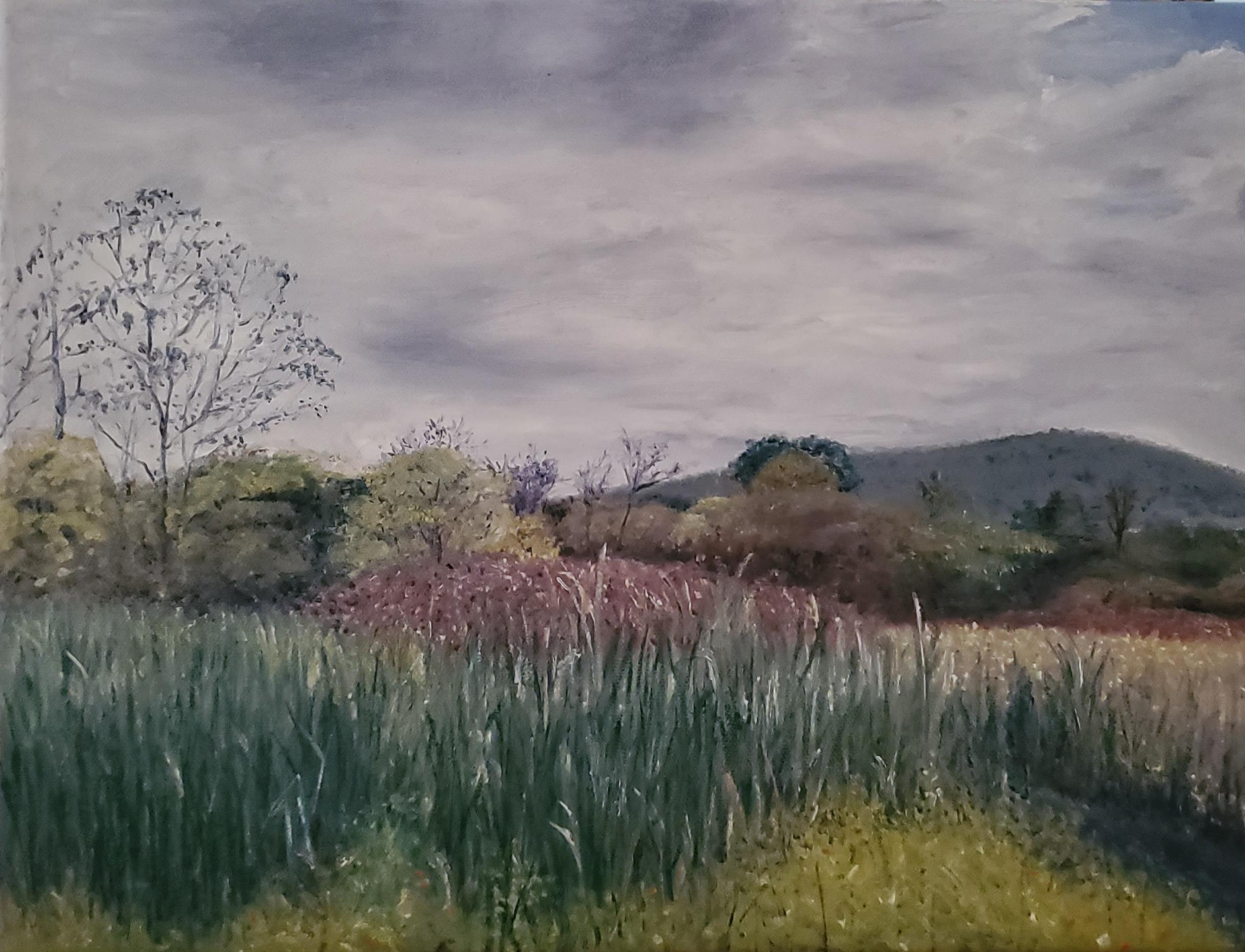 Millbrook Marsh; oil on canvas; 2019