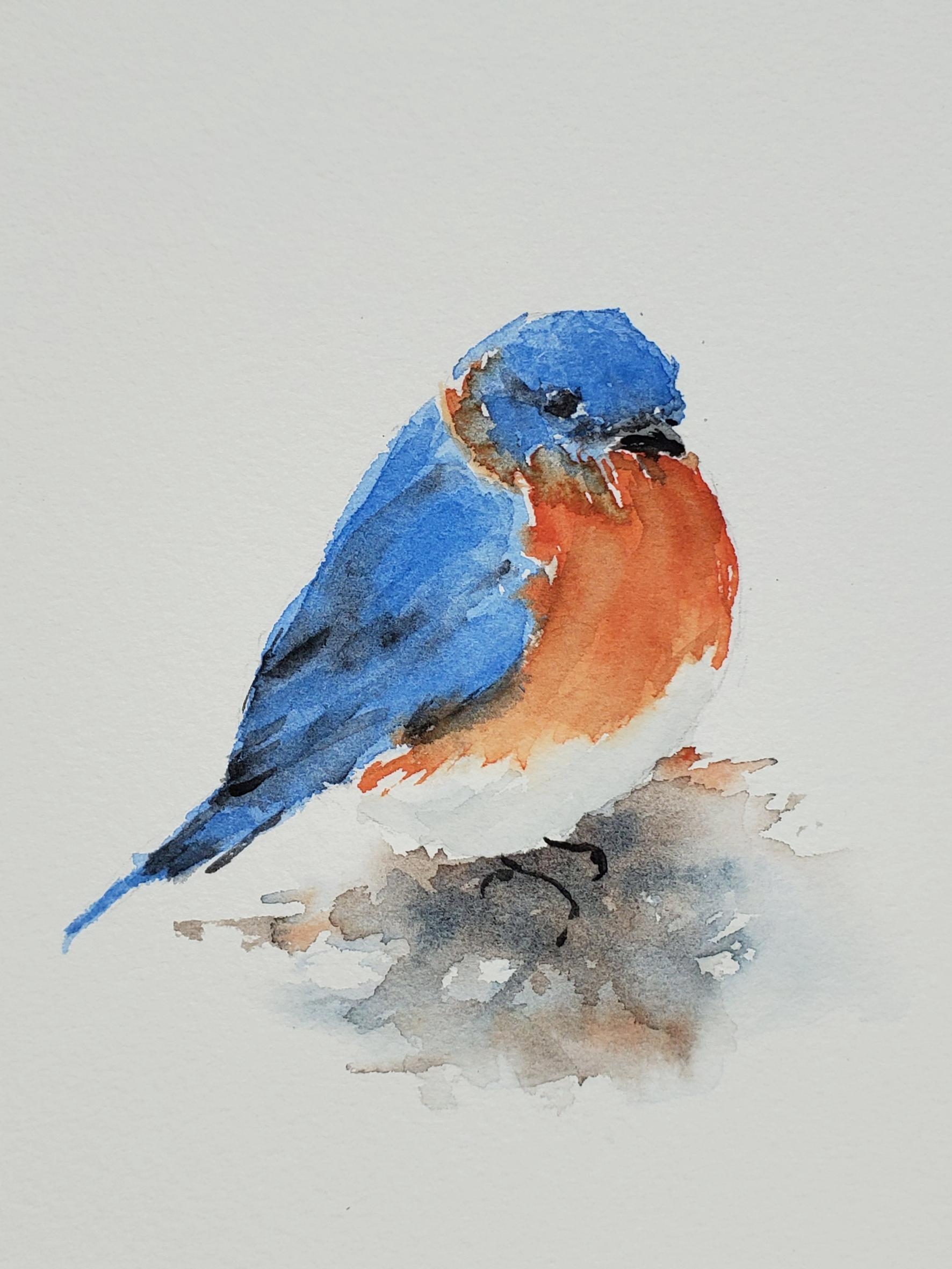 Bluebird; watercolor; 2019