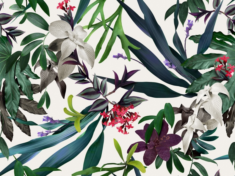 Louise Jones collaboration with Rebel Walls has resulted in gorgeous tropical and botanical wall papers.