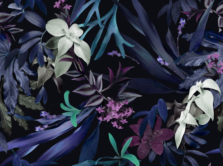 Louise Jones and Rebel Walls collaboration has resulted in gorgeous tropical and botanical wall papers.
