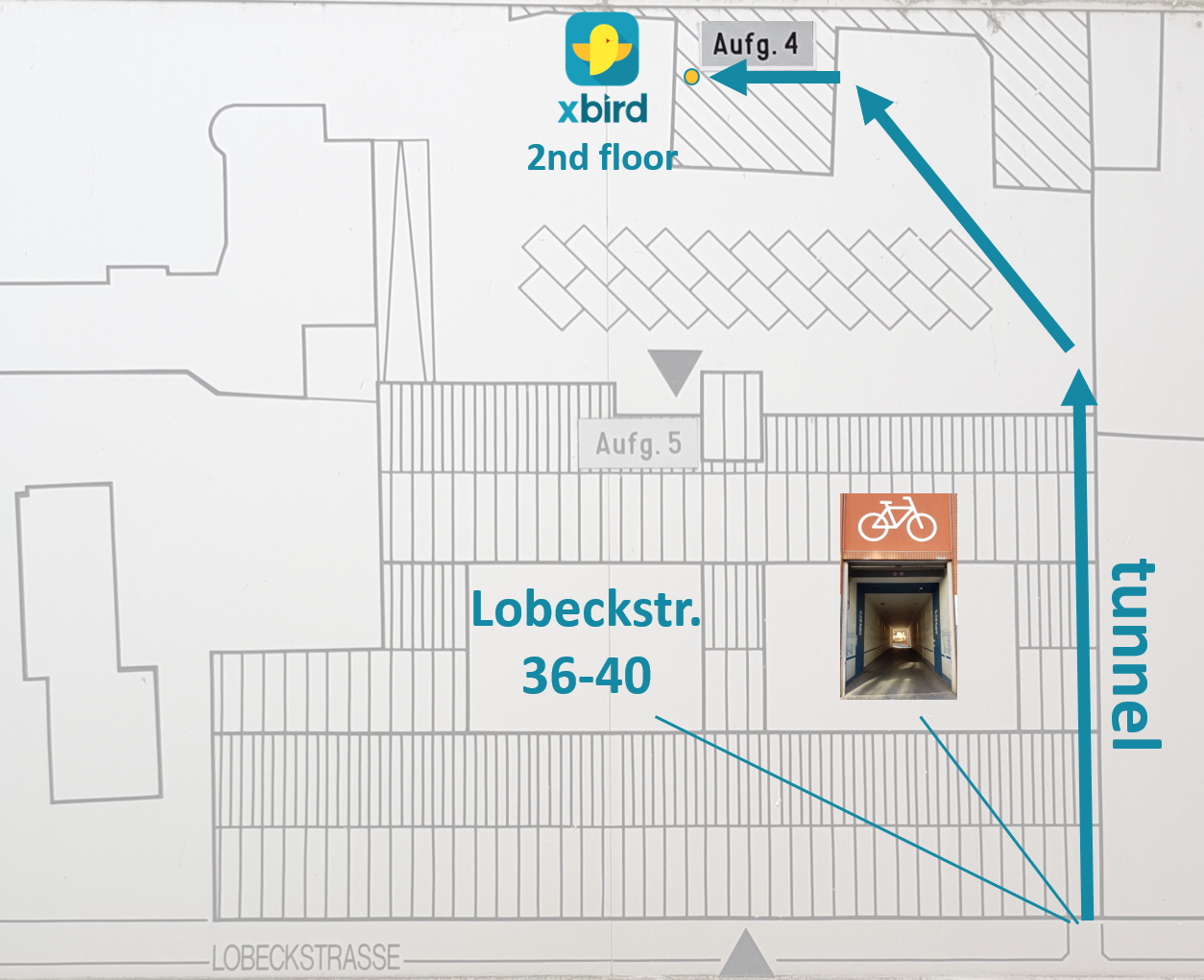"- Directions: On Lobeckstraße go through the tunnel with the big bicycle sign (to numbers36-40). Then in the inner courtyard go straight and left to the staircase 4 (""Aufgang 4"") which is in another smaller tunnel. At staircase 4 (""Aufgang 4"") ring xbird's door bell, go to the second floor and go through the left door."
