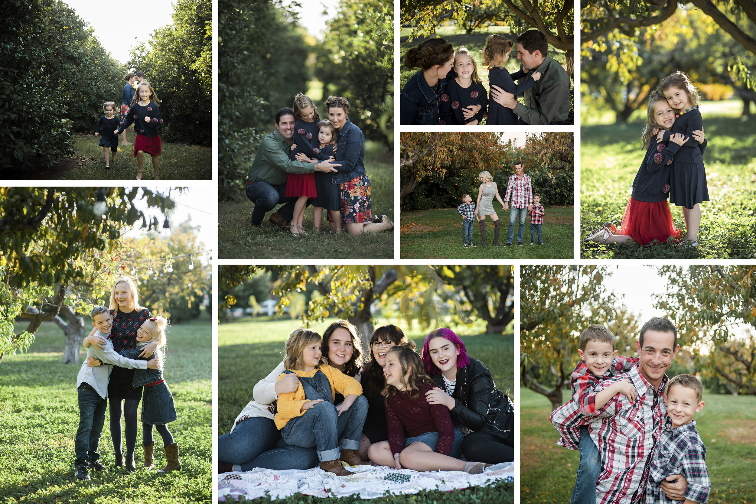 ***Agritopia Farms private Orchard sessions are 15-20 minutes, include at least 10 edited images and the cost is $300 which includes tax the location fee***