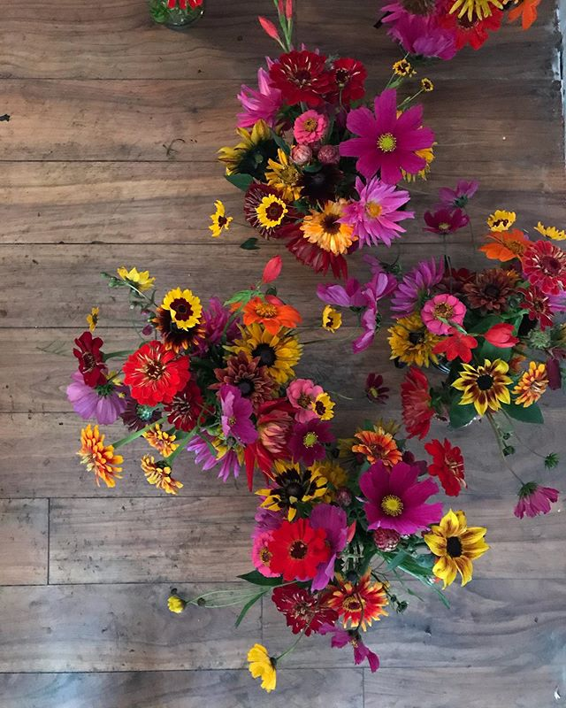 It's fully Autumn for this week's bunches. Unlike they sky though they are as bright and brilliant as our participants. Get them while you still can @leilas_shop. 🍁 🍂 🧡