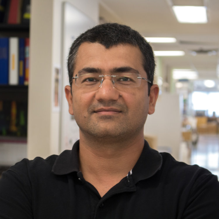 Arshad Ayyaz    Postdoctoral Fellow MSc (Integrated Cell Biology), Louis Pasteur University, PhD (Immunology), University of Strasbourg Email Unknown