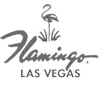 dm_client_logos_website_200b_0015_Flamingos(1).png