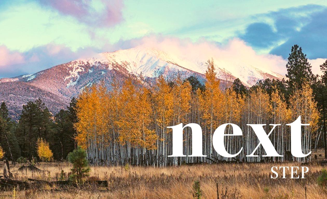 Nextstep1.png