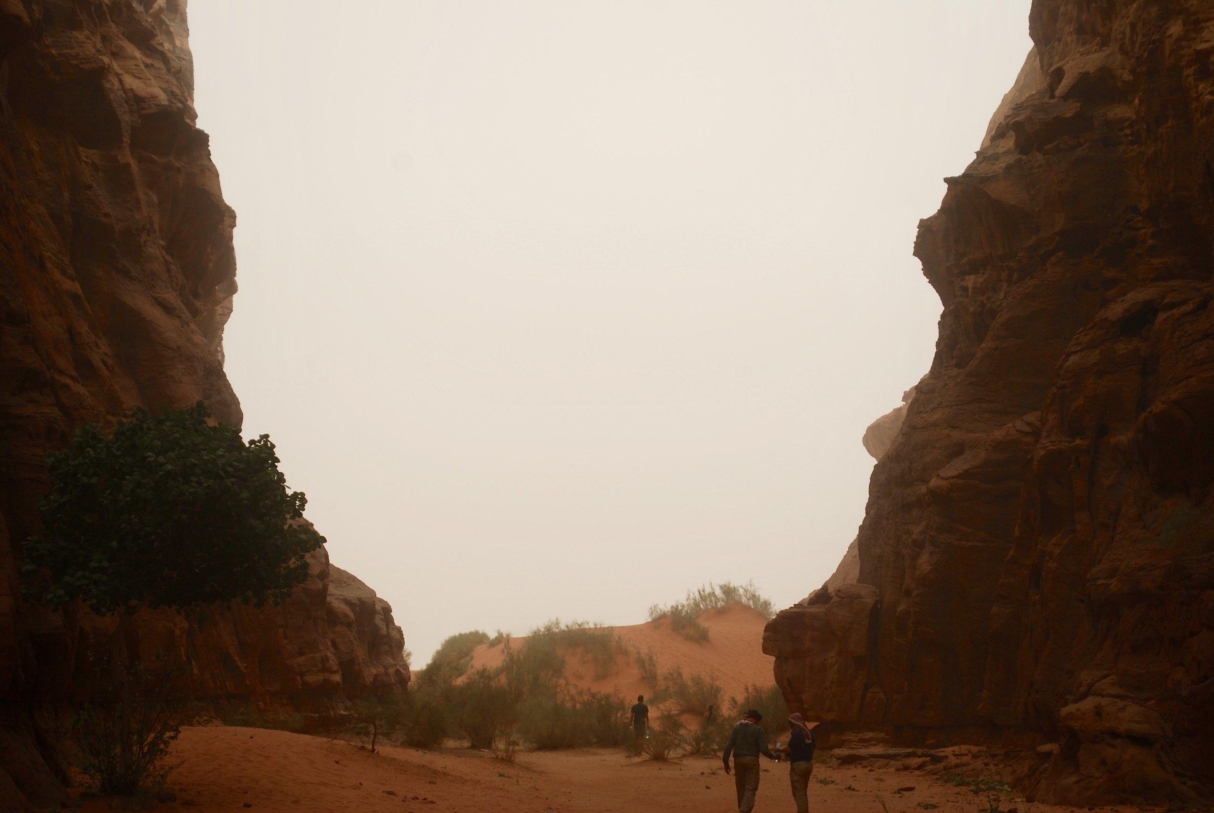 View of the exit of Abu Khashaba Canyon, Wadi Rum