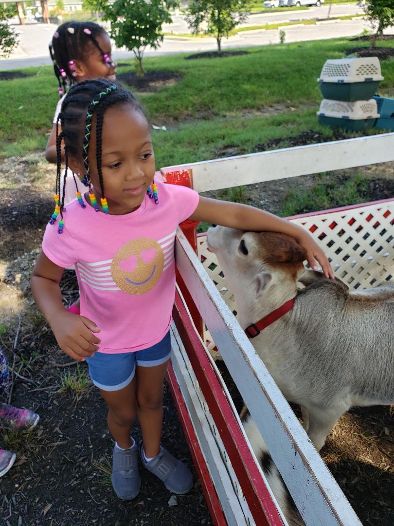 Mary's Go Round Petting Zoo