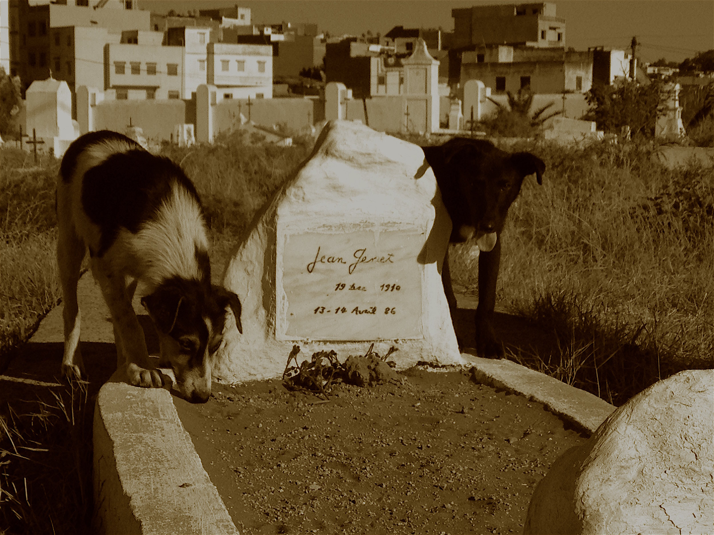 Jean Genet's grave in Larache, Morocco. (Photo by Kaite O'Reilly)