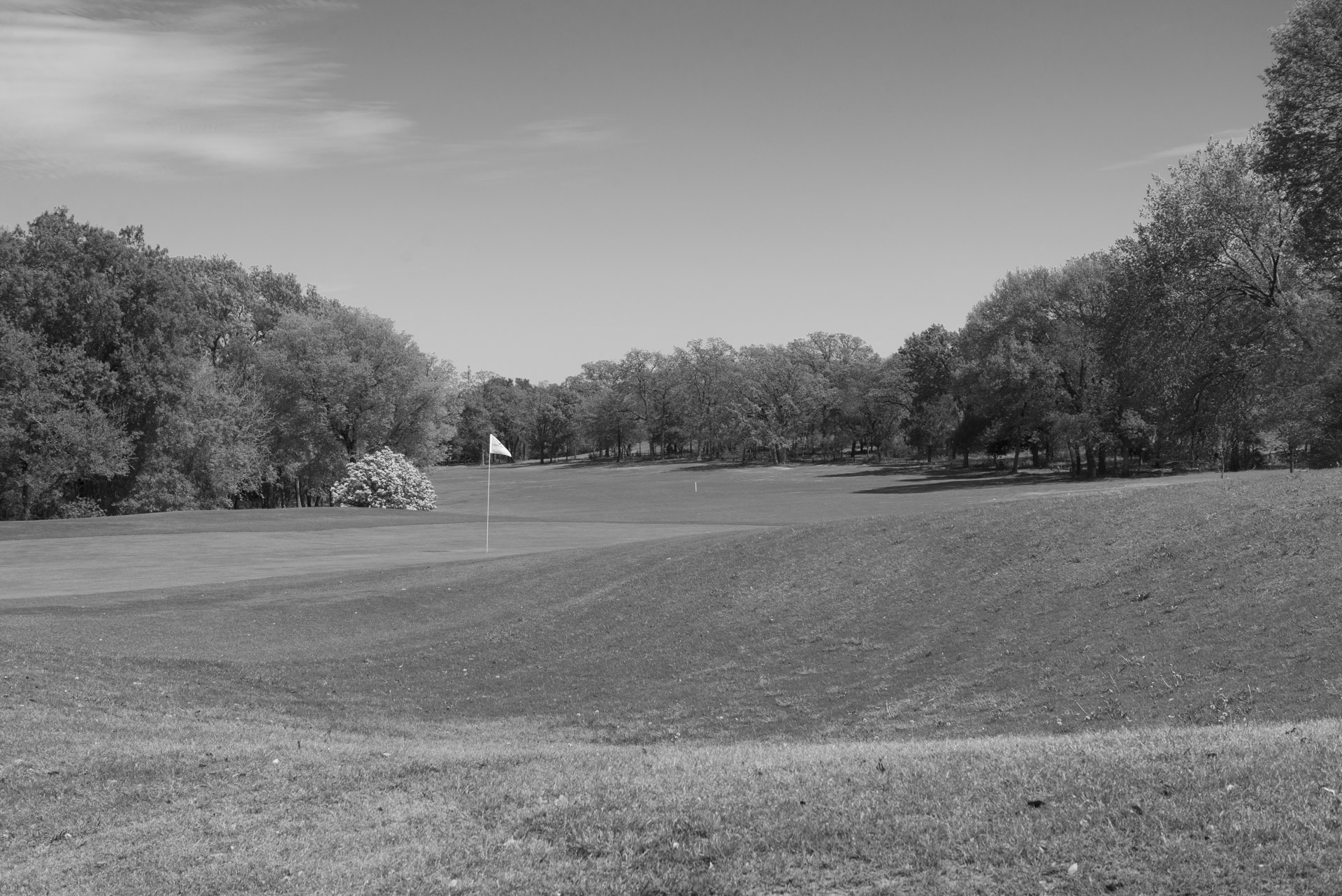 PeterHiatt_Golf-6.jpg