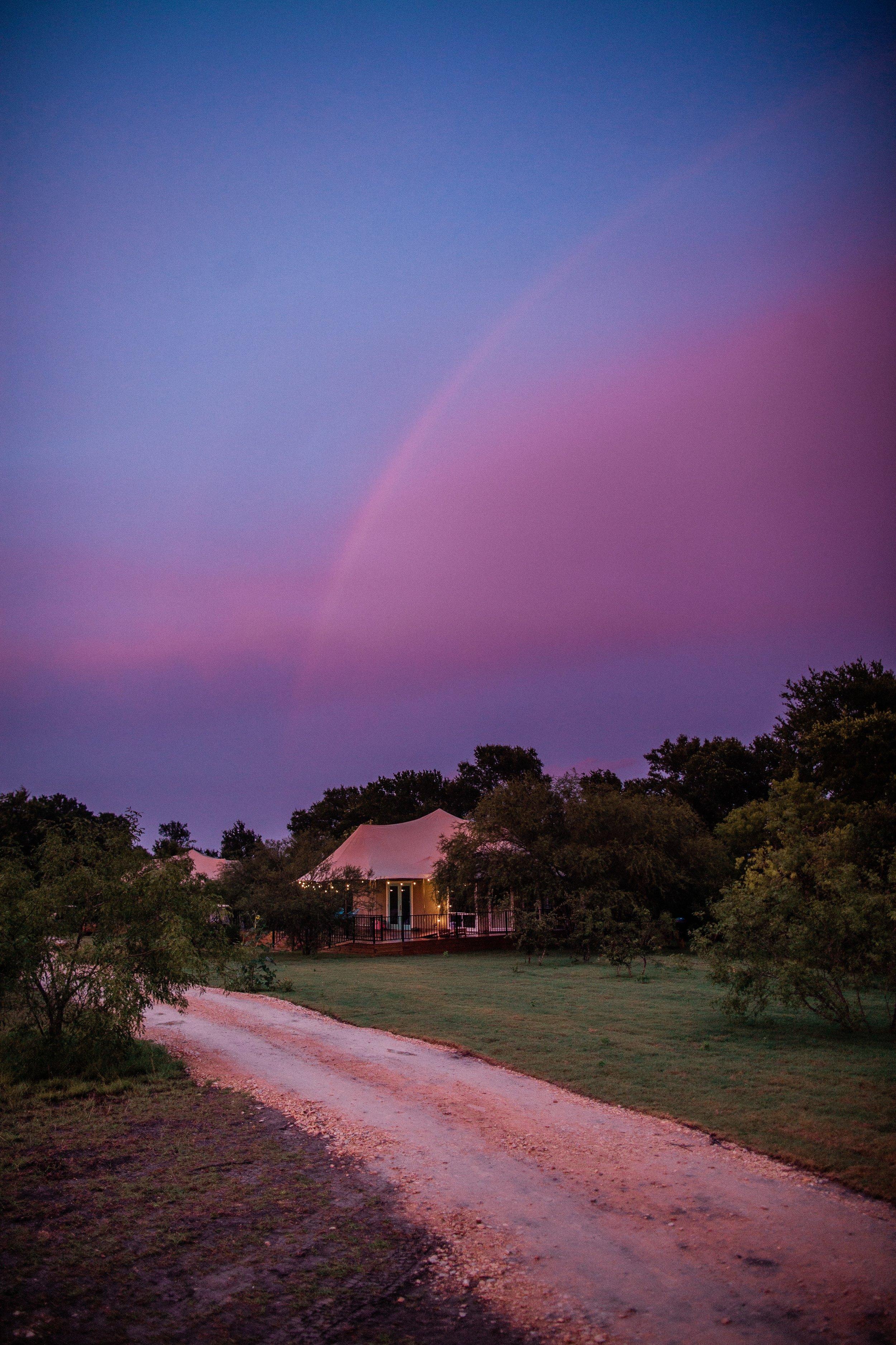 stargazer rainbow 2.jpg