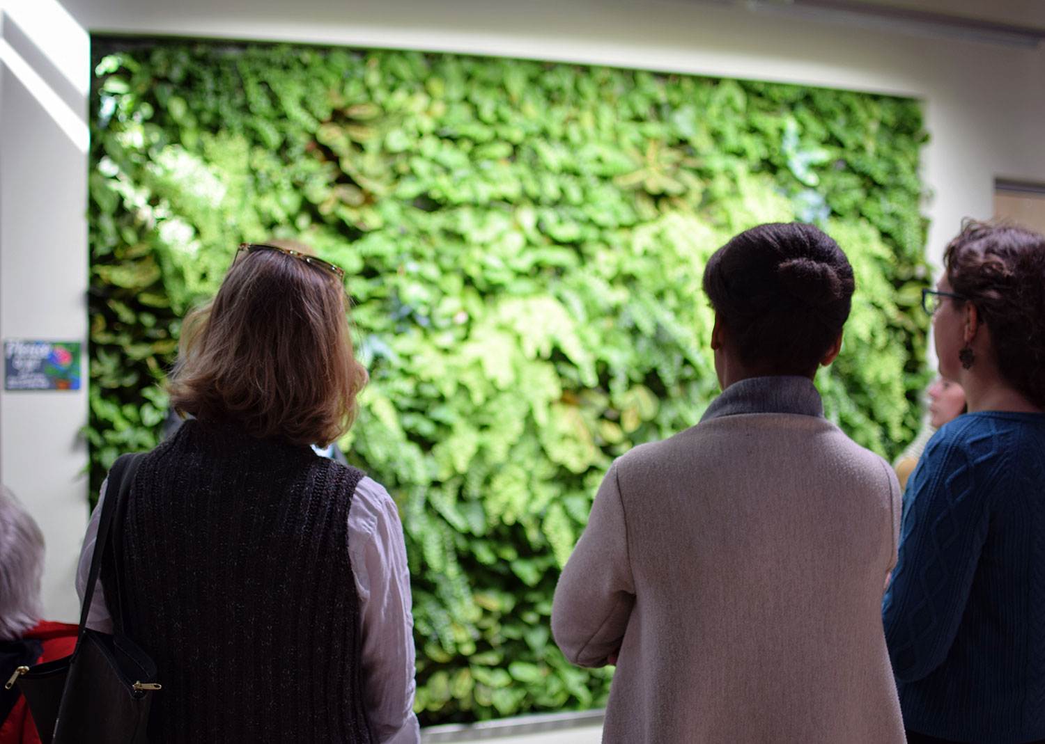 The green wall, made of living plants and supported by the building's graywater, brings the outside in.