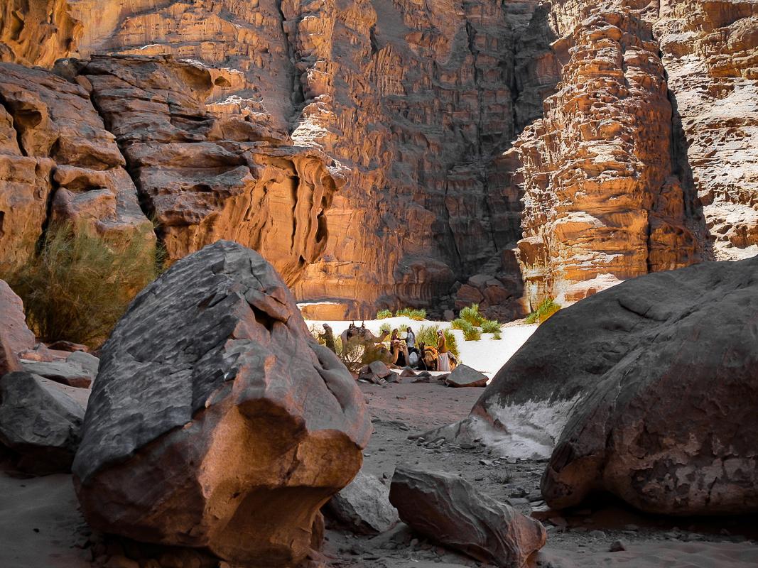 Men and Camels, Wadi Rum , Jordan