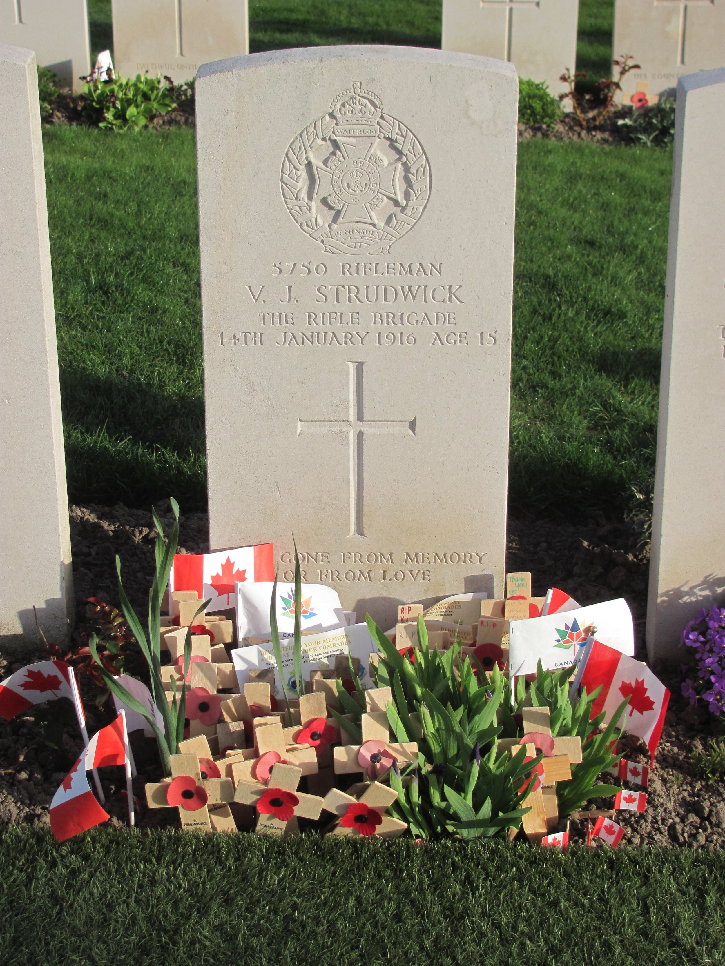 Much visited, the grave of V. J. Strudwick, British soldier at Essex Farm Cemetery, required astro turf to replace grass, due to foot traffic.