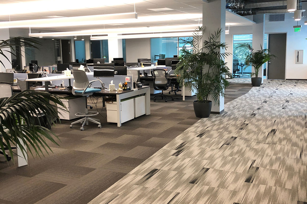 our-work-page-photo-of-a-clean-office-and-carpet-1204x803.jpg