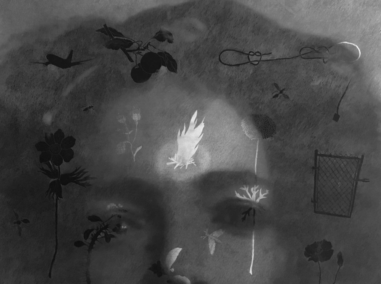"David DuBose, ""El Jardin"" (detail), graphite on photograph, 2018"