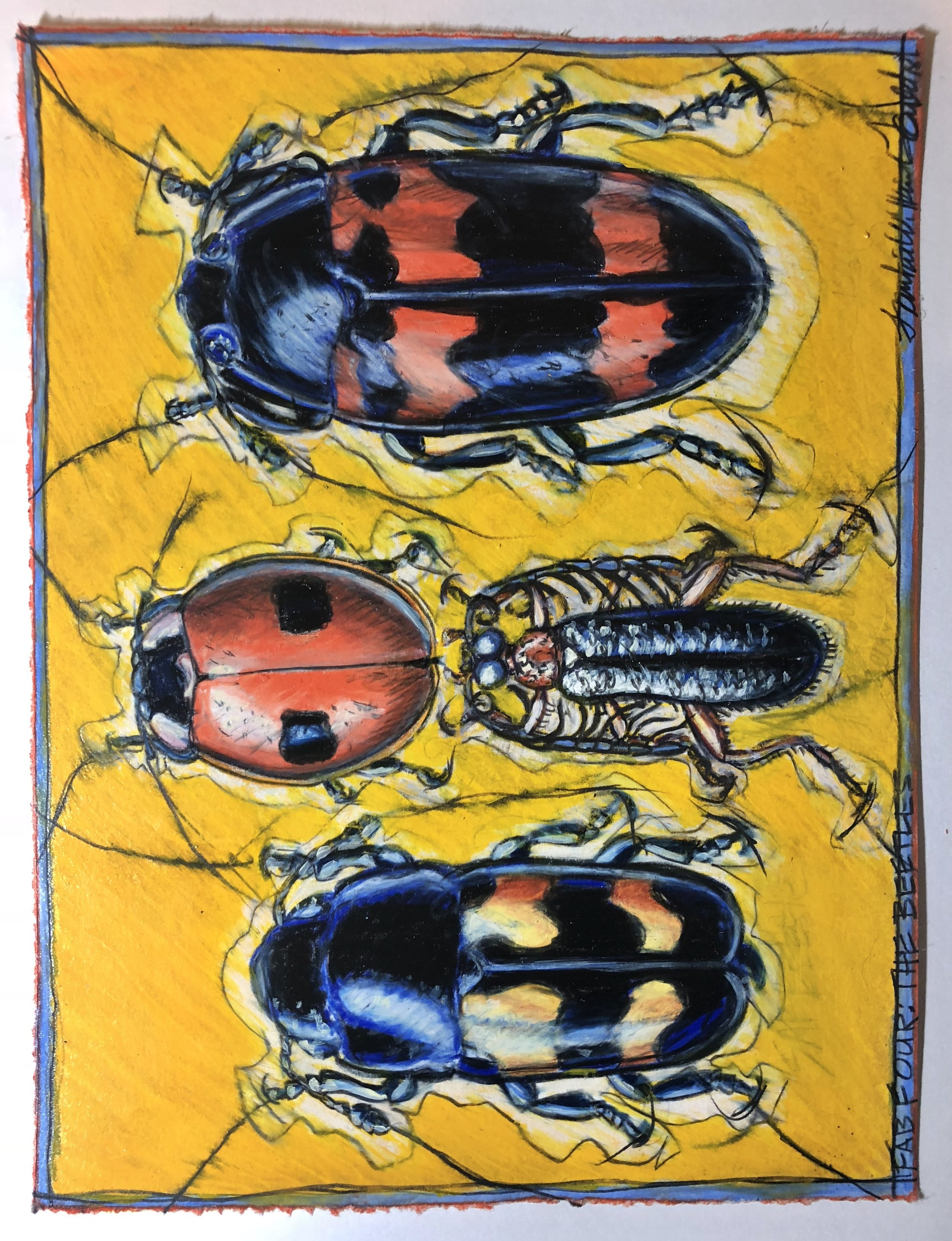 """Frankie Gould, """"Fave Four: The Beetles,"""" prismacolor pencil on paper, 16 x 12 in"""