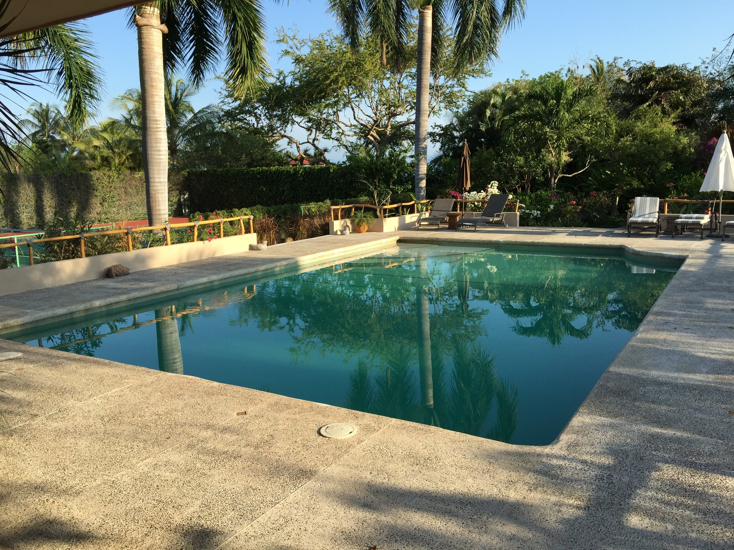 Large  pool, good for both kids and adults.