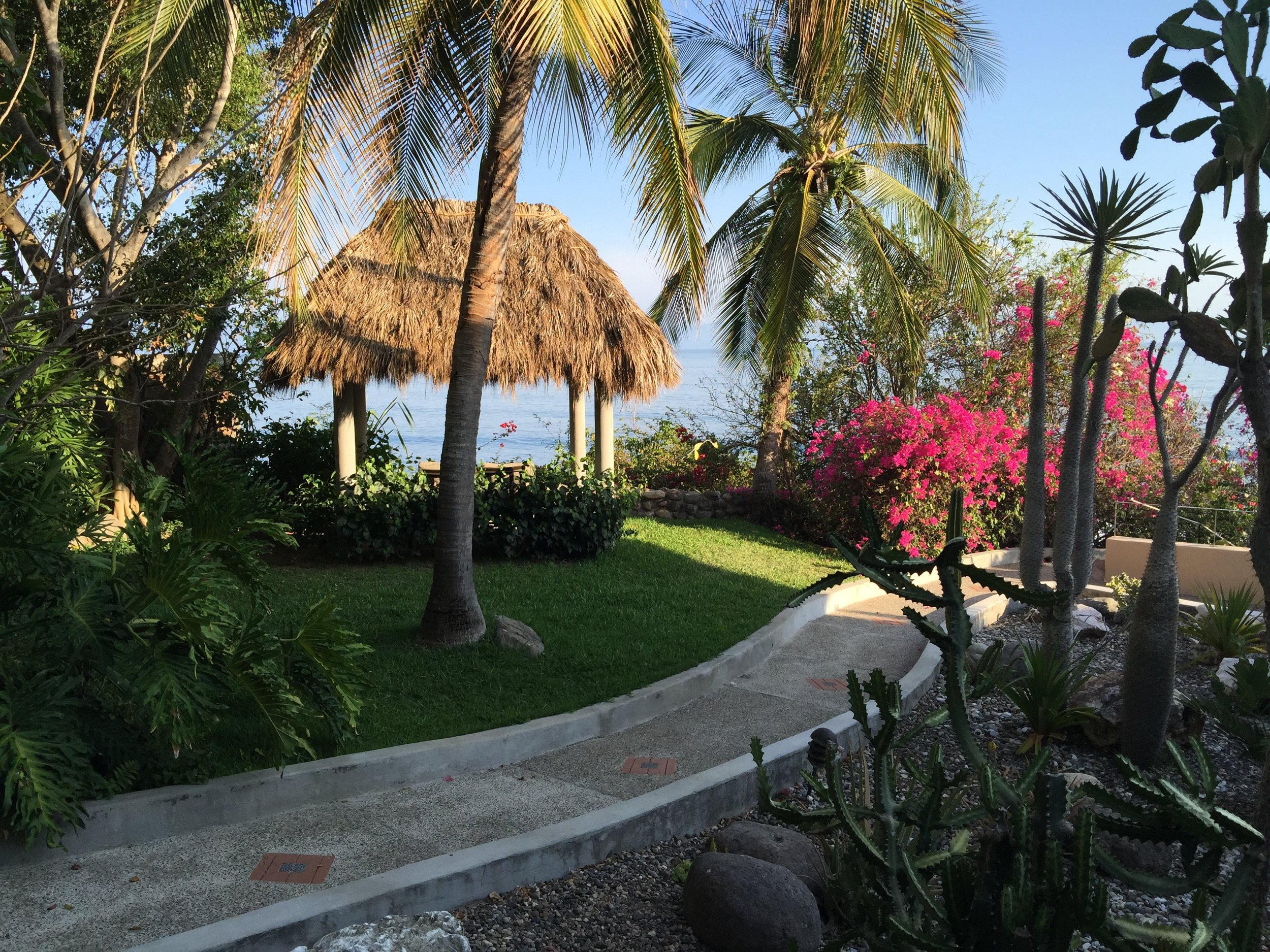 2 acre tropical garden with walking paths.