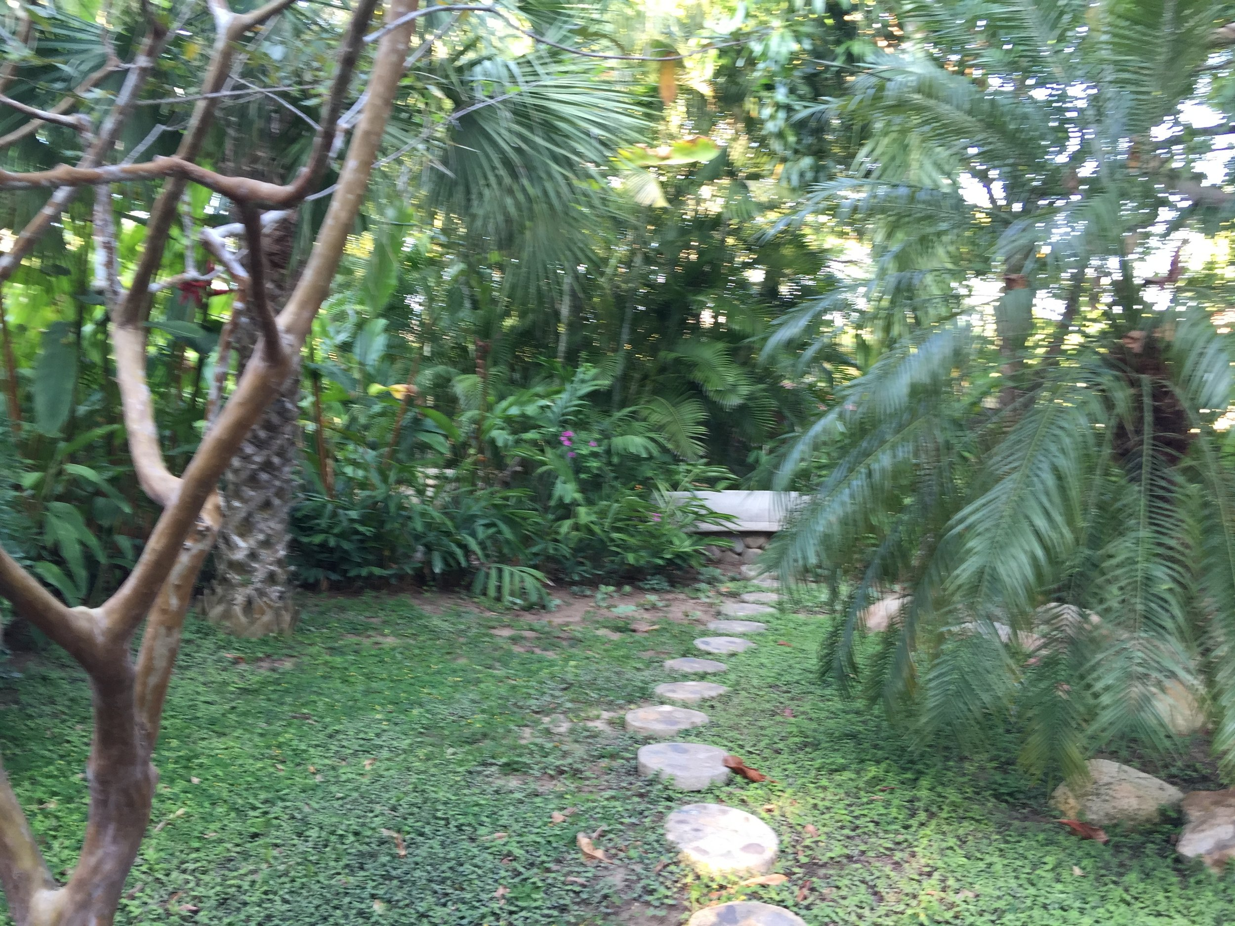 Pathway to meditation hideaway.